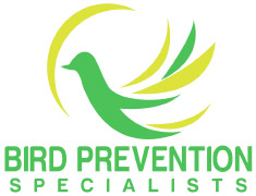 bird prevention specialists